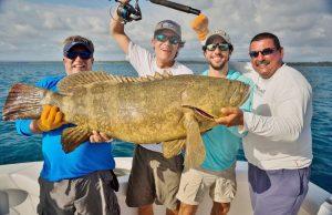 bobby mcguinness cazador grouper